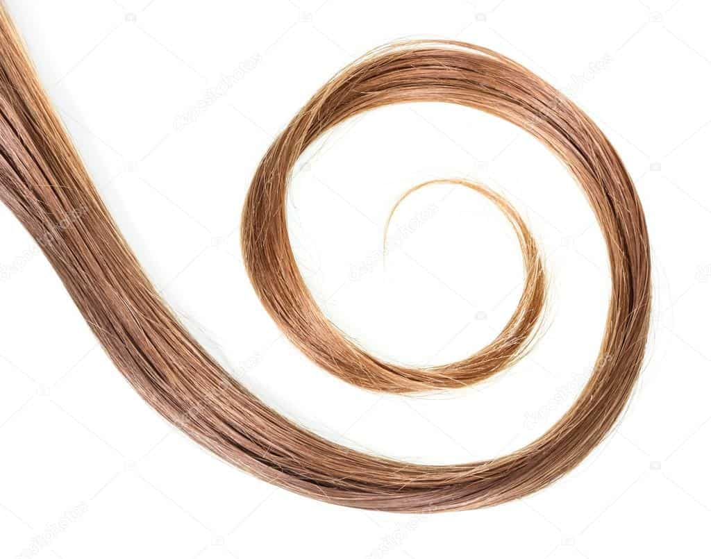 depositphotos_109678450-stock-photo-curl-brown-natural-hair-isolated