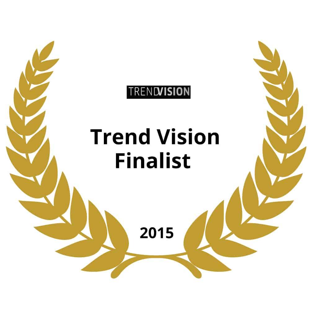Wella-International-Trend-Vision-Finalist-2015