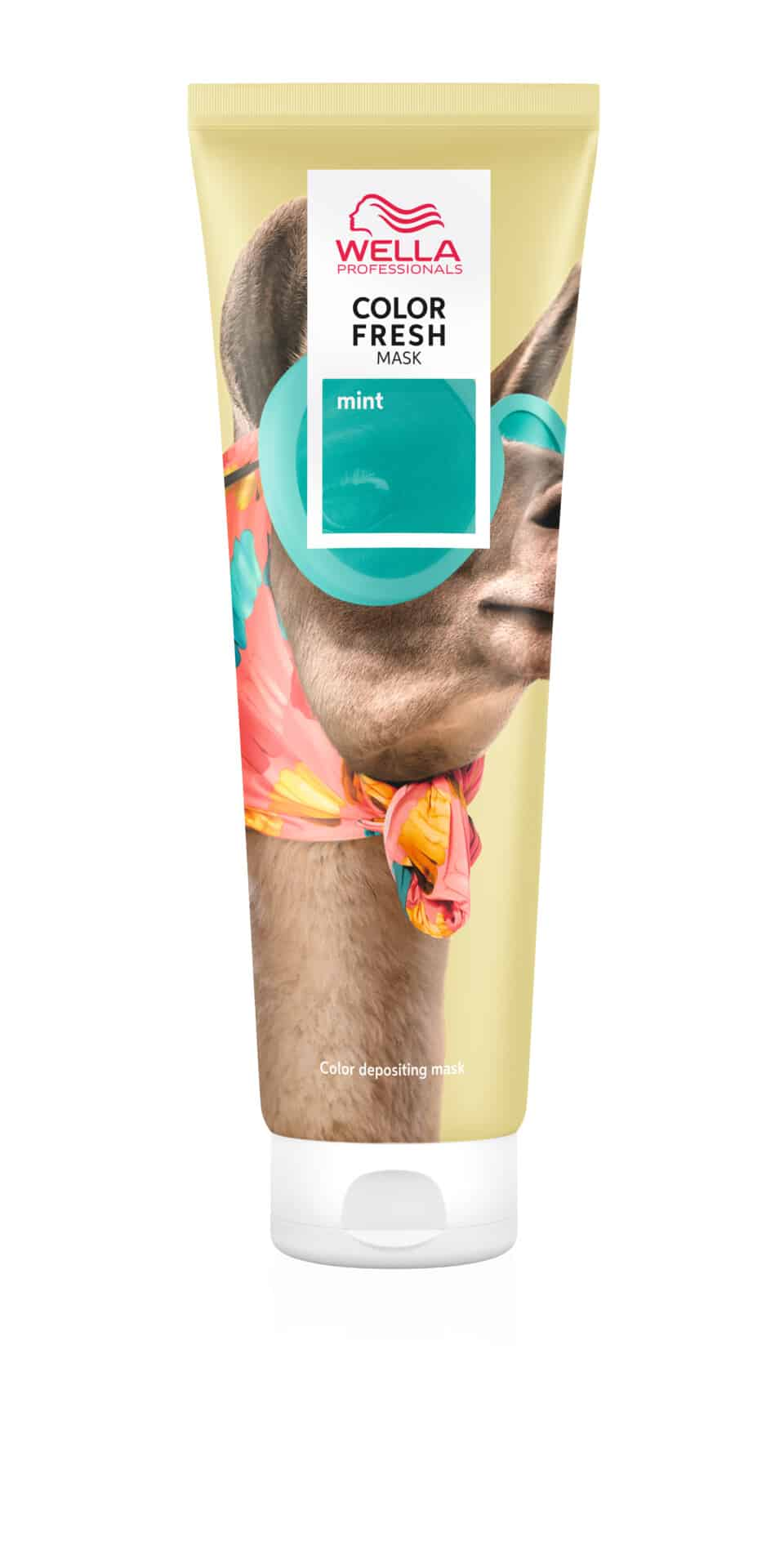 Colour Fresh Mask Mint